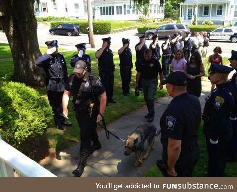 Police salute their K-9 companion as he walks to be put down