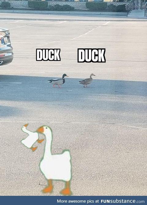 Untitled Goose Meme