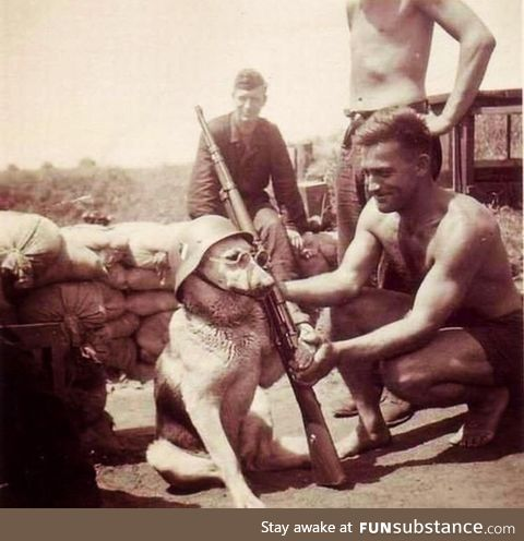 Lieutenant Hans Hund, overseeing his men before being sent to France