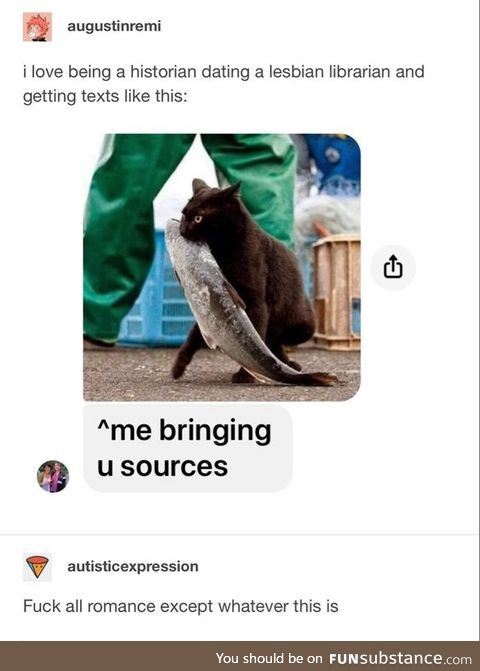I don't know if I want the cat or the sources, but I like both