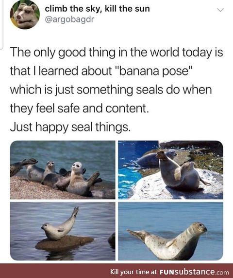 Banana pose