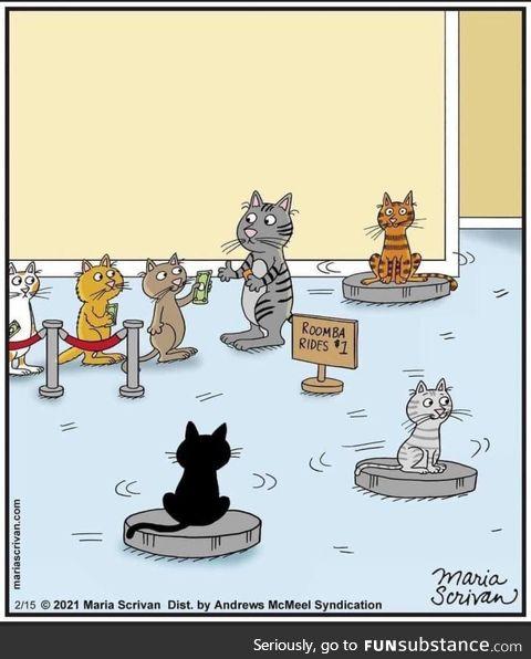 Kitty rides