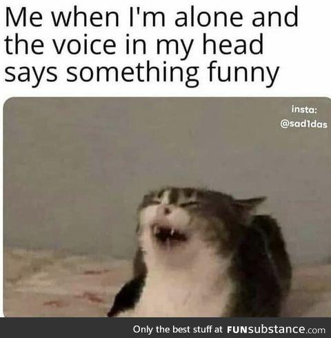 I'm funny