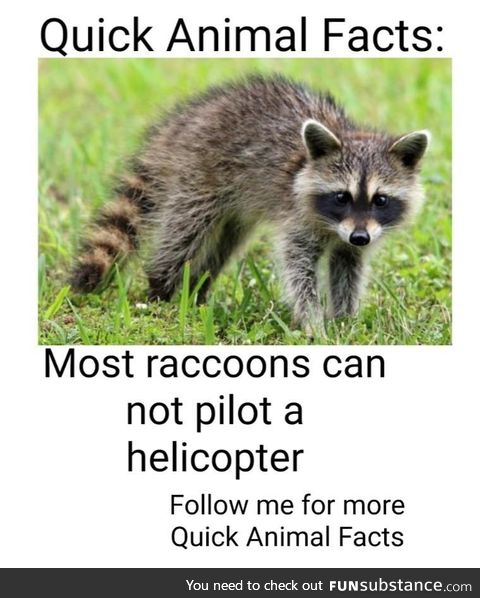 Quick animal fact #7