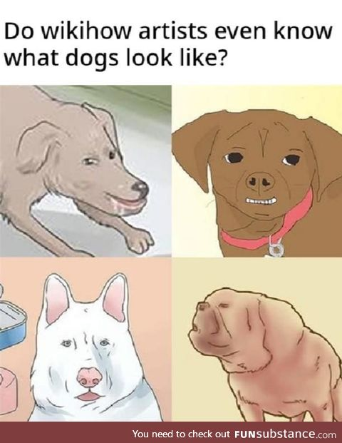 Have they ever seen a dog?
