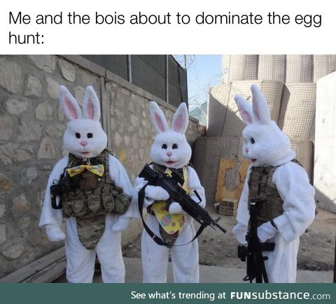 Bravo bunny going dark