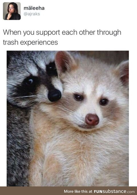 Supporting each other through trash experiences