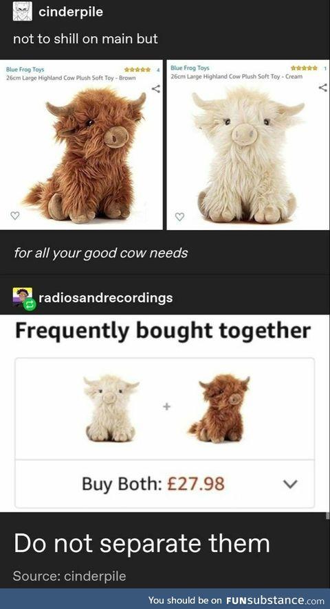 Highland Cow Plushies