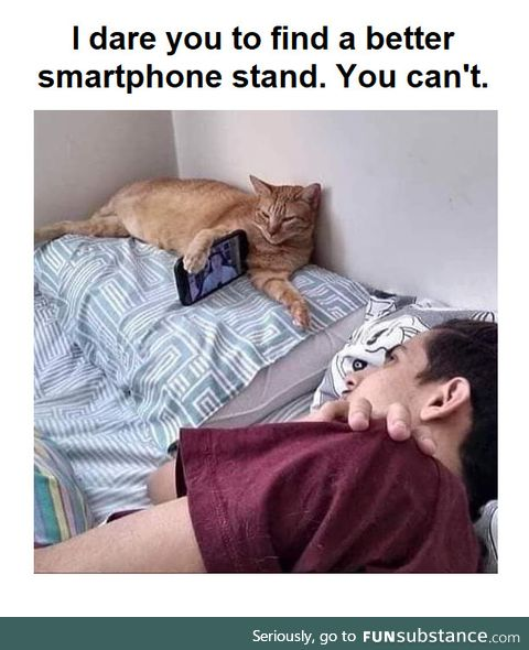 The best smartphone stand ever