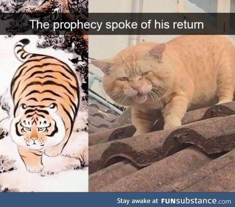 Step back, he's returned