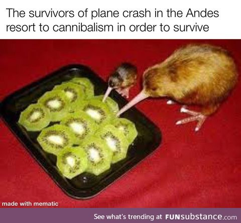 The award for the best cannibalists goes to the Andy's!
