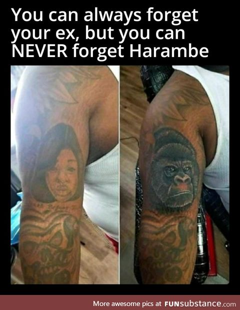 It's already been 5 years... We miss you Harambe