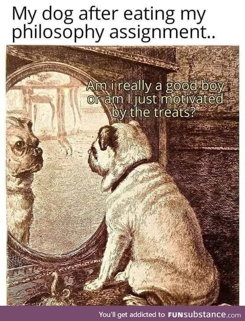 Doggo freud philosophy