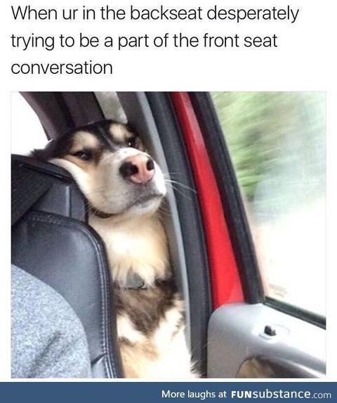 Being a poor backseat doggo
