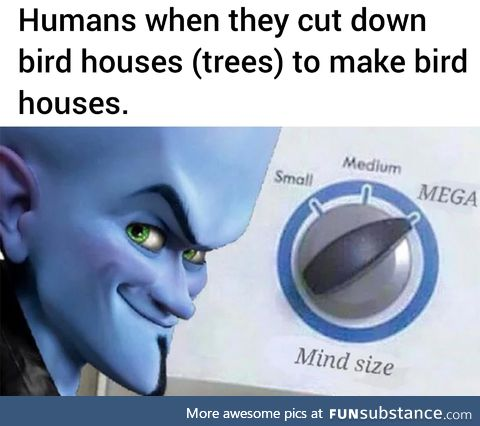 Those birds will thank us later