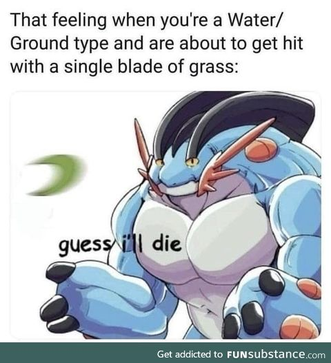 Imagine using Water and Ground pokemon