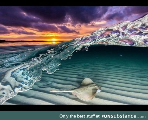 Once in a lifetime shot by photographer