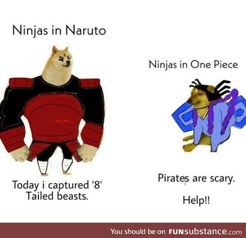 Pirates are superior beings