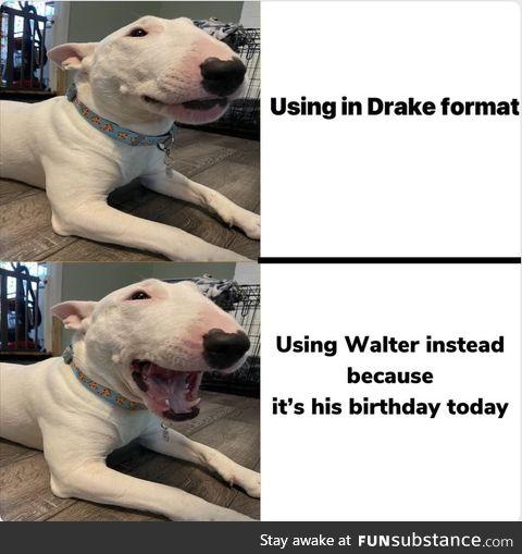 Happy birthday to the funny forward facing meme dog!