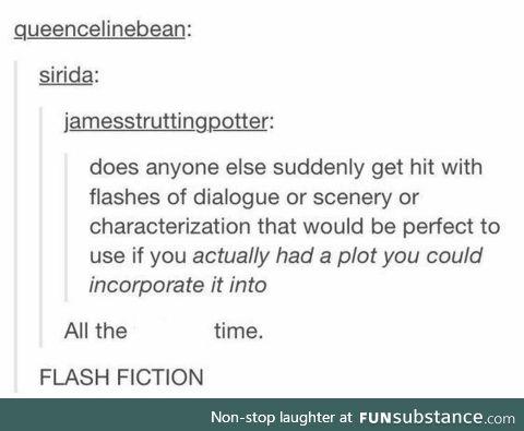 Flash Fictioin