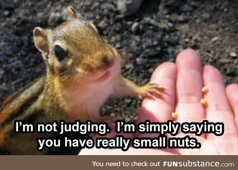 It's not the size of the nuts that counts