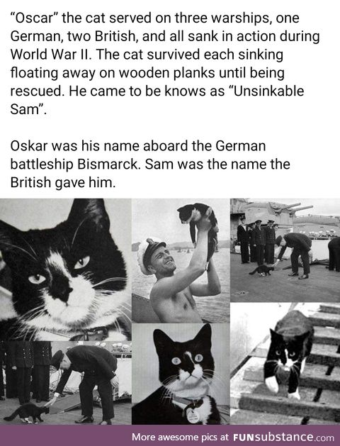 Daily dose of history, part 82