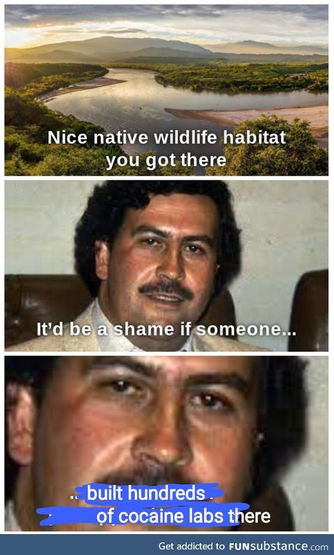 Whatchya got there pablo?