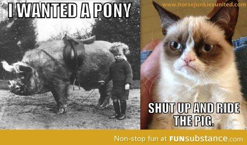 Grumpy Cat!!!